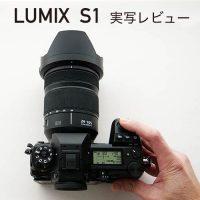 【実写レビュー】フルサイズLマウント LUMIX S1の写りはいかに!?