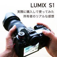 【レビュー】LUMIX S1を購入し使ったリアルな感想